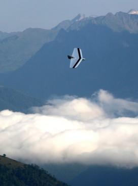 La Weasel de Jose-Luis dans les Pyrénées